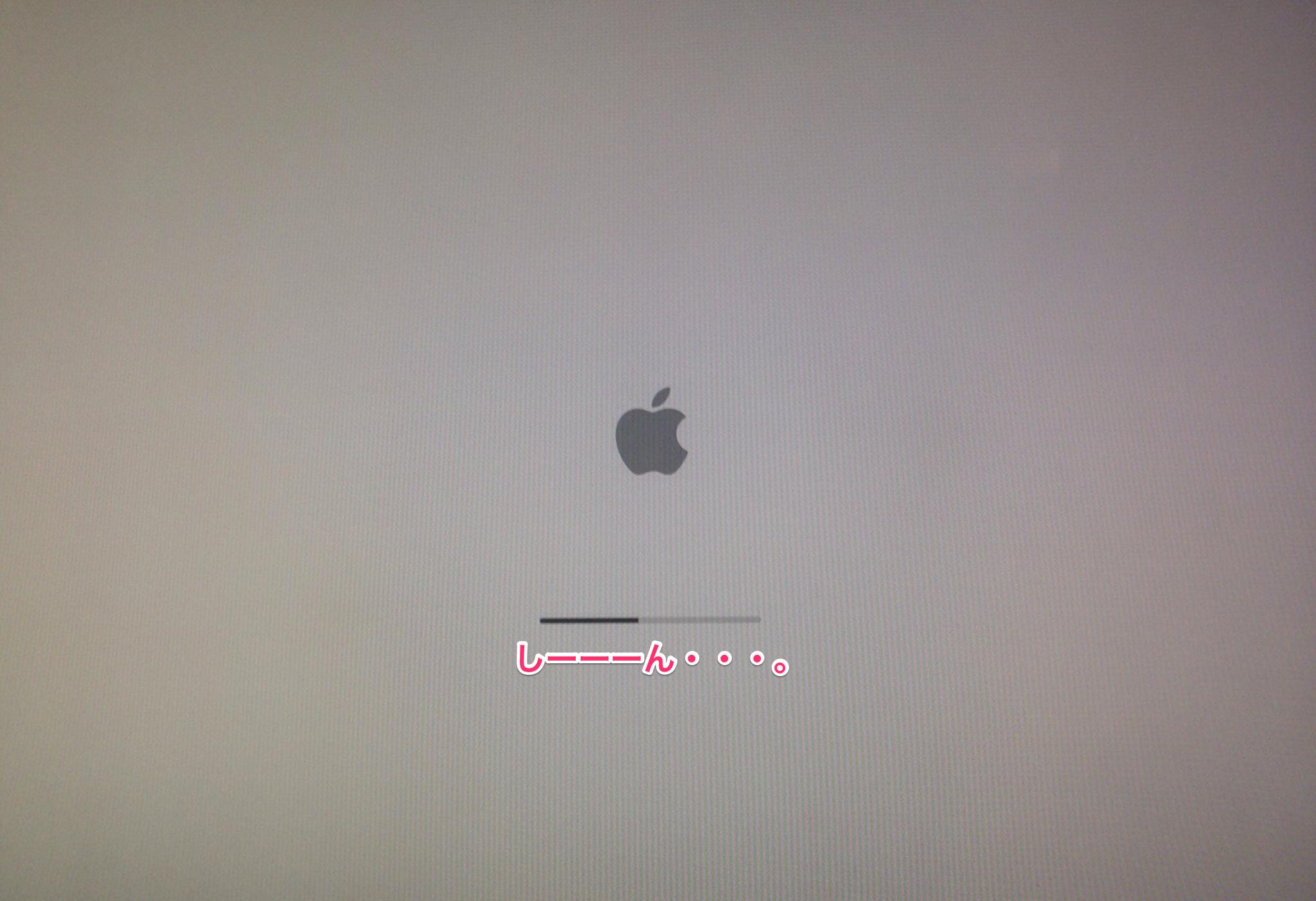 macのグレースクリーン