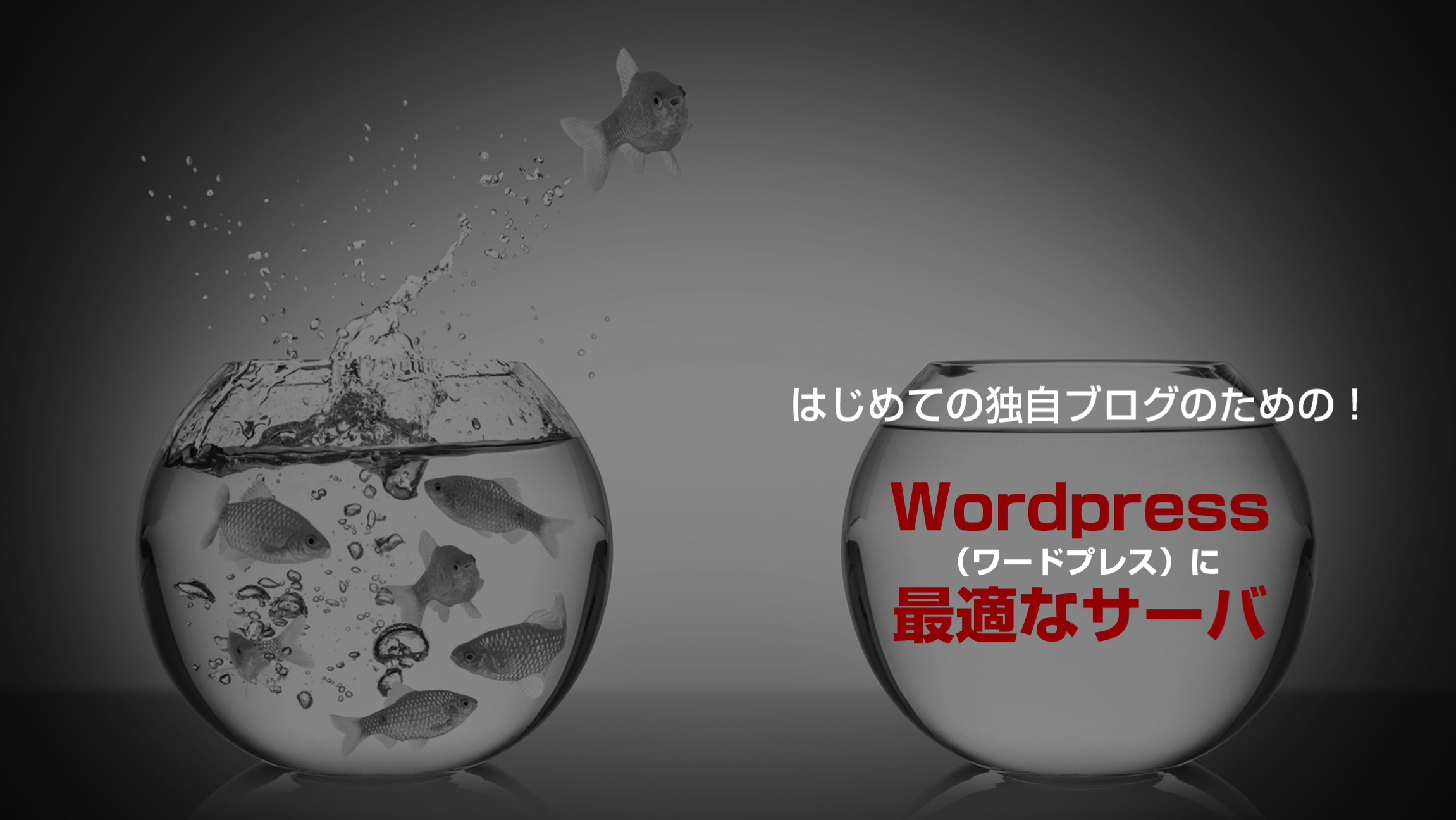 Wordpress(ワードプレス)に最適なサーバ.png