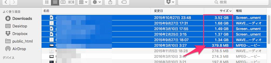 サイズの大きな動画ファイルを削除