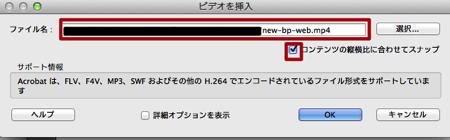 PDFにビデオを挿入